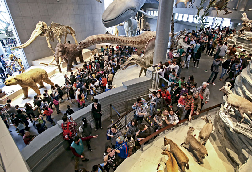 Museums in China - Shanghai Natural History Museum (new building)