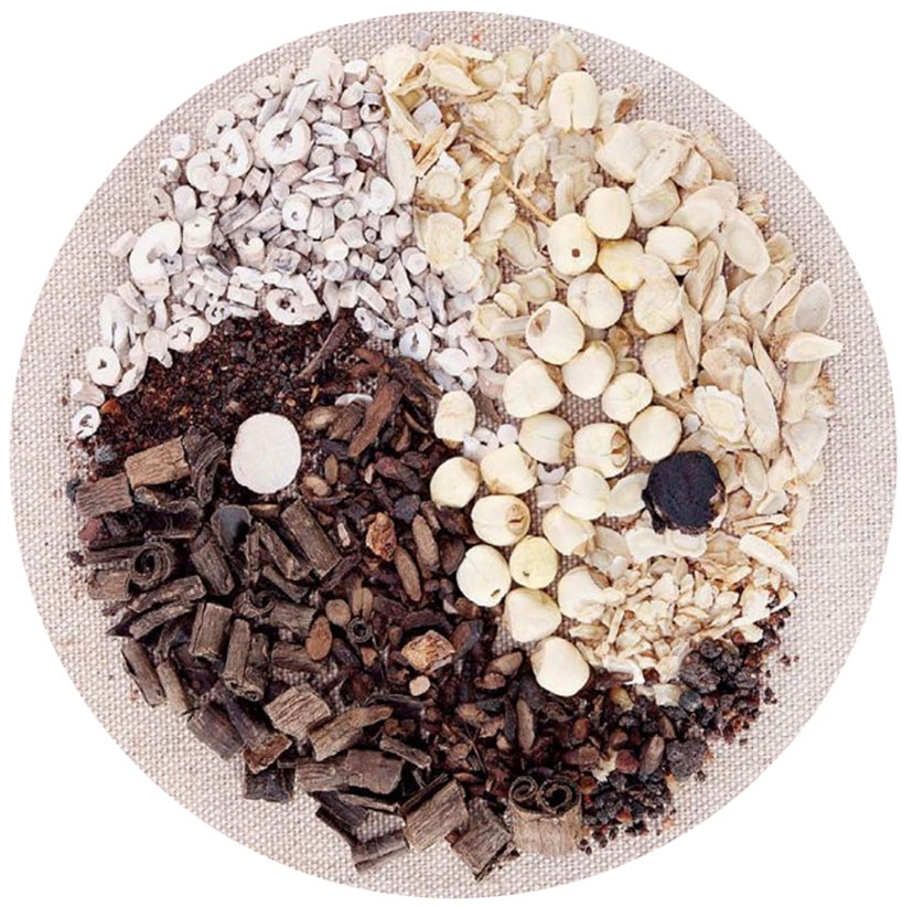 History of Traditional Chinese Medicine